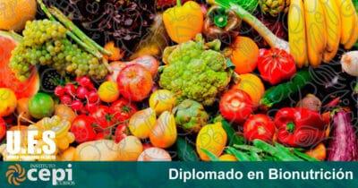 Curso de Diplomado en Bionutrición